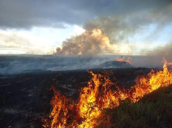 Gran incendio PNC. Dic. 2009. Fuente: Humberto Chan