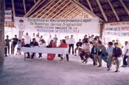 Breve relación de la historia del ambientalismo venezolano