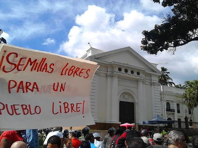 NO MÁS ALIMENTOS TRANSGÉNICOS EN VENEZUELA.