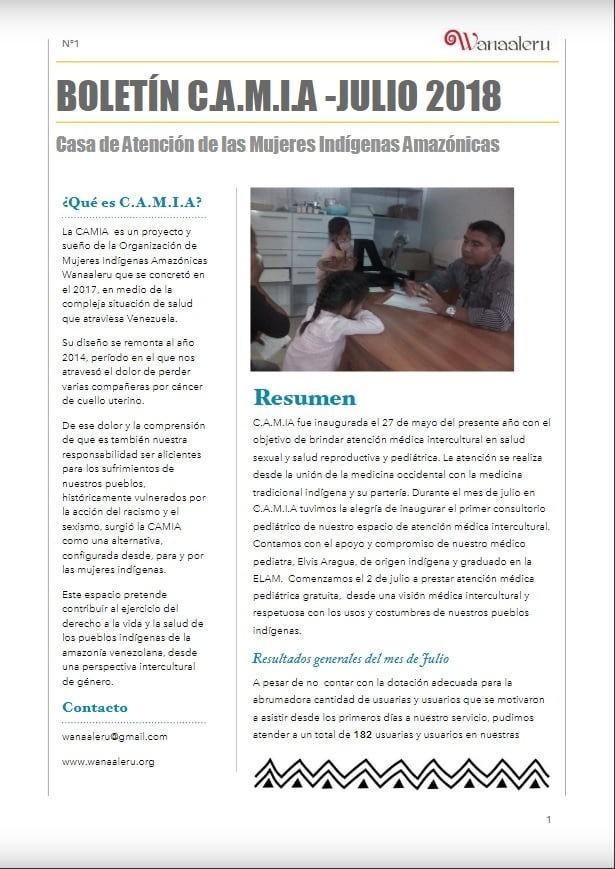 Boletín C.A.M.I.A – Julio 2018