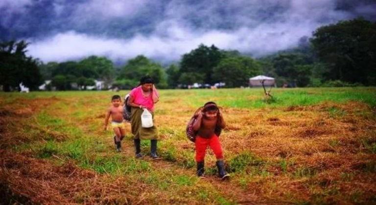 Denuncian que grupos armados colombianos amenazan derechos de indígenas en Machiques