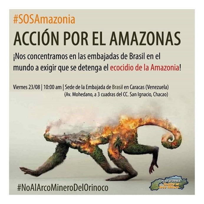 Ecocidio del Amazonas: una política de Estado