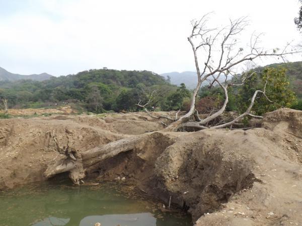 La minería arrasa miles de hectáreas en Carabobo y Aragua