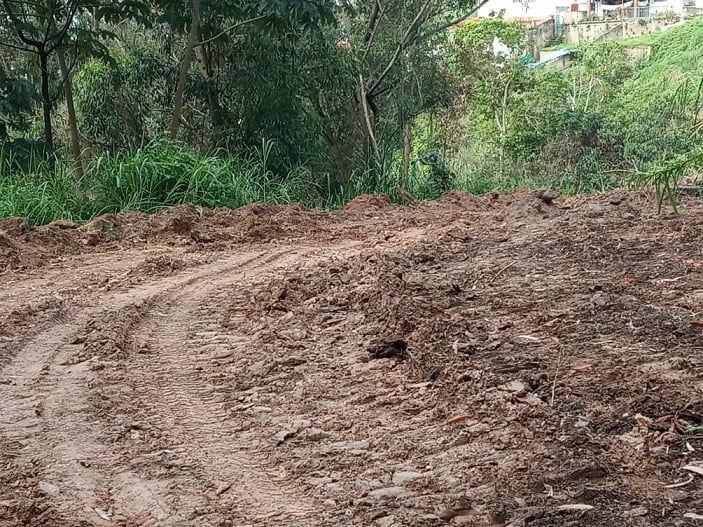 En Carrizal exigen detener ecocidio en bosque altomirandino