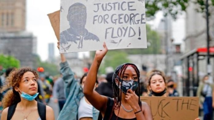 Racismo, xenofobia y monocultivo: un alegato a favor de la diversidad