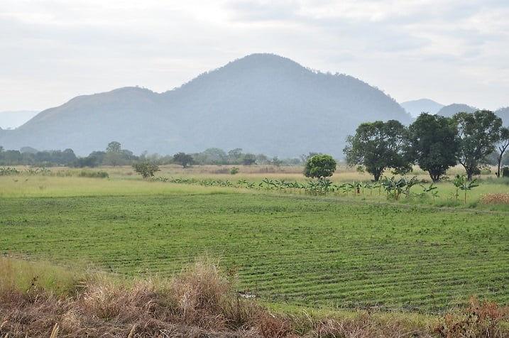 Lara: Campesinos denuncian desalojos arbitrarios en Sarare